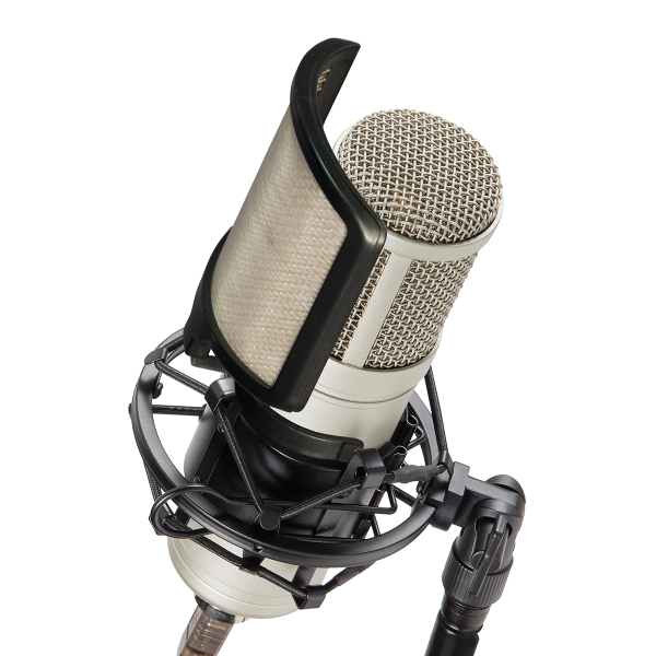 Excellent condenser microphone for recording vocals.<br />Cardioid polar pattern. <br />Great sound and design at a breakthrough price!<br /><br />