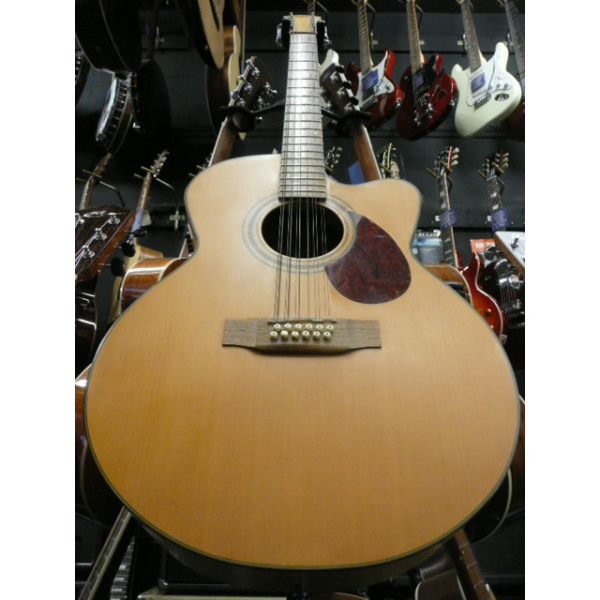 <p>Very nice electro-acoustic 12-string guitar in excellent condition.</p><p>RRP: &pound;699</p>