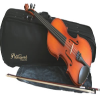 This award-winning violin is a step up from the basic student model.