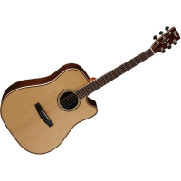 <p>All-solid electro with dreadnought body shape and quality electronics.  </p><p>Includes hardcase.</p>