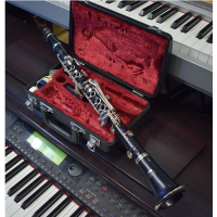 <p>A quality instrument with a lovely tone and a very playable action.<br /><br />Mint condition with original 6C mouthpiece and carry-case.</p><p>Highly recommended by music teachers.<br /><br /></p>