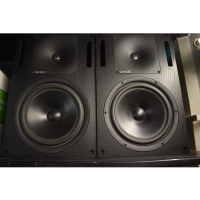 <p>Legendary active studio monitors from this highly regarded manufacturer.</p><p>No compromise, high-end sound quality, well-suited to professional studio environment.</p><p>Great frequency response - from 36 Hz to 22kHz at +/- 2.5db.</p><p>300w amplification (180w bass, 120w treble)</p><p>Crystal clear, with a wide, open soundstage. Detailed, smooth and enjoyable to listen to.</p><p>Large cabinet and 10 inch drivers will add a certain sense of gravitas to any control room!<br /></p><p></p><p></p>