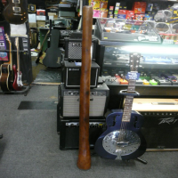 <p>Deep red hardwood didgeridoo.  Not sure if this is a single branch or made from the trunk!</p>
