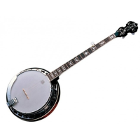 <p>Stunning 5-string banjo with solid maple body, mahogany neck, floral inlays, 24 brackets, and Remo head.</p><p>RRP: £699</p>
