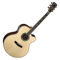 Solid-top electro-acoustic guitar with country jumbo body shape, Fishman preamp, Grover tuners, and more.