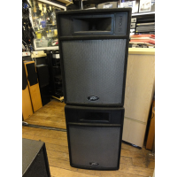 Rugged two-way passive 15''s.<br />300w RMS. 600w Program. 1200w Peak.<br /><br />