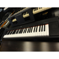 <p>Excellent learner keyboard with a good 61 key touch-sensitive action and built-in speakers.</p><p>10 sounds including two high quality piano samples. </p><p>Built-in recorder for capturing performances.</p><p></p>