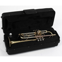 "<p>A good quality instrument for learners.</p><p>Brass trumpet with gold lacquered finish.<br />Stainless steel valves<br />Bore Ø 11,65mm<br />Bell size<span class=""Apple-tab-span"" style=""white-space:pre;"">	</span>Ø 125mm<br /><br /></p>"