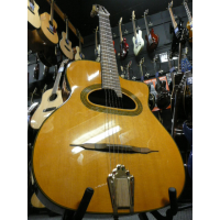 Richwood Hot Club D gypsy jazz guitar with solid top and great tone.