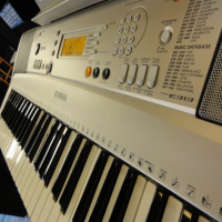 Well-built 61 key arranger keyboard with great sounds and a very playable action.<br />500 sounds, loads of rhythms and accompaniments.<br /><br />