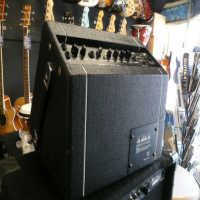 15 watt portable acoustic amp in excellent condition.
