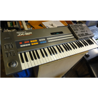 <p>Classic Roland analogue polysynth, with programmer!<br />Released in 1985.<br />6 voice, 2 DCO's per voice. (Analogue oscillators with digital control)<br />Pulse, Saw, Sine and Square and Noise waveforms.<br />2 ADSR envelopes.<br />Sync and Cross Modulation.<br />Portamento, Unison and Solo Modes.<br />LFO: Sine/Square/Random with Delay and Rate controls.<br />Filter: Analogue, 24db per octave, Resonant Low-pass, Non-Resonant High-pass.<br />1 Bank of 32 Presets, 1 Bank of 32 User Patches.<br />The PG-800 gives you instant hands-on control of every synth parameter, unlocking this synth's vast potential.</p>