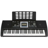 <p>61-key touch-sensitive keyboard for learners.</p><p>300 Sounds, 200 Styles, 100 Preset Songs.<br /><br /></p>