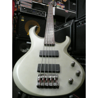 <p>Superb 5-string bass with active circuit, 24 frets, and titanium grey flat finish.</p><p>Excellent condition.</p>