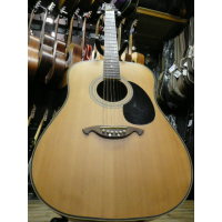 <p>Nice dreadnought acoustic guitar with matte finish.</p><p>Condition: a few chips in the back of the neck, otherwise good.</p><p></p>
