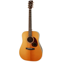 Superb electro-acoustic with discreet electronic system, solid top, ebony fingerboard, and more.