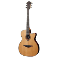 <p>Awesome solid-top electro-acoustic with a very shallow body depth, but a nice deep tone!&nbsp; This guitar also features lots of nice little touches from the exquisite woods and&nbsp;binding, to the unique soundhole rosette and carved headstock.</p>
