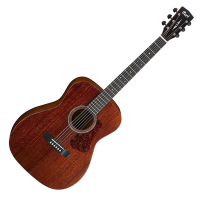 Concert-size acoustic guitar with solid mahogany top, mahogany back & sides, and slim neck profile.