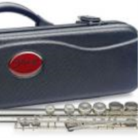 Student model flute outfit in sturdy ABS case.