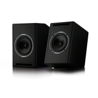 "Co-axial 8"" monitors at a breakthrough price. 140 watts RMS each. Frequency response 60Hz-20KHz (± 3db)."